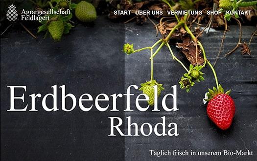 website lux webdesign berlin webdesigner homepage webseite erstellen lassen internetseite